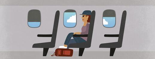 Flying With Flighty Legs image